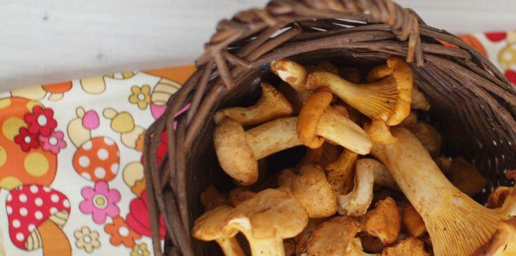 5 recettes insolites avec les champignons !