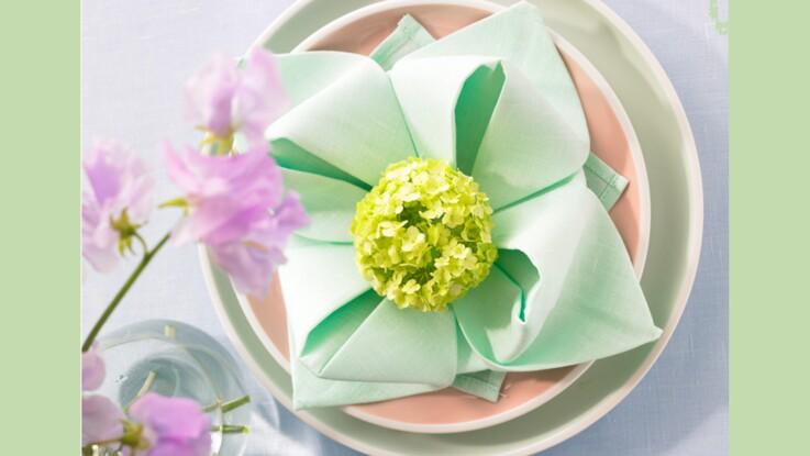 Coloriage Fleur De Nenuphar.Pliage De Serviette Fleur De Nenuphar Femme Actuelle Le Mag