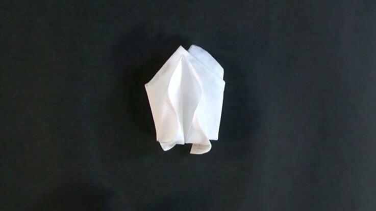 Pliage de serviette : tulipe