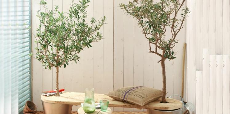 Un banc de jardin écologique