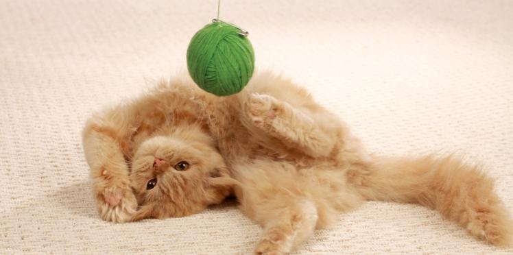 Crochet : la maille en l'air ou chaînette