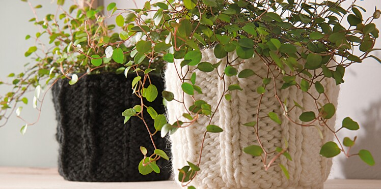 Des cache-pots à tricoter