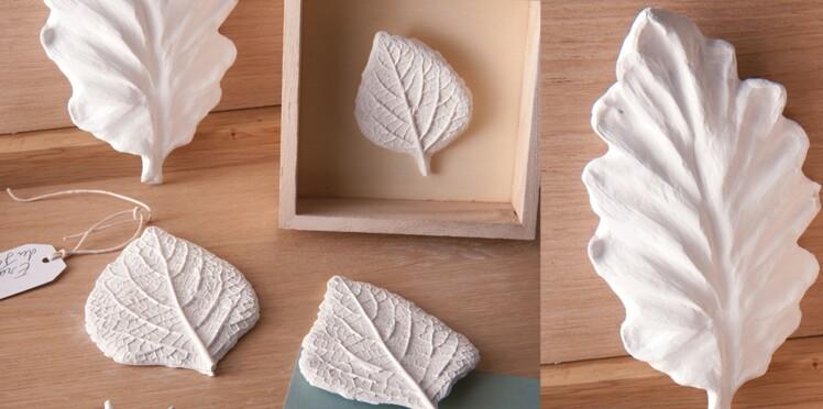 Des feuilles moulées et modelées