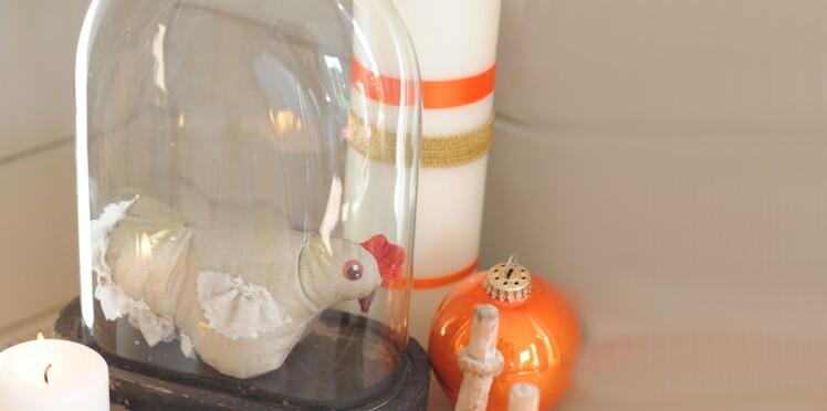 Une poule sous son globe en verre