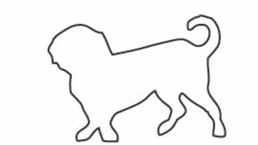 Les motifs chiens en adhésif