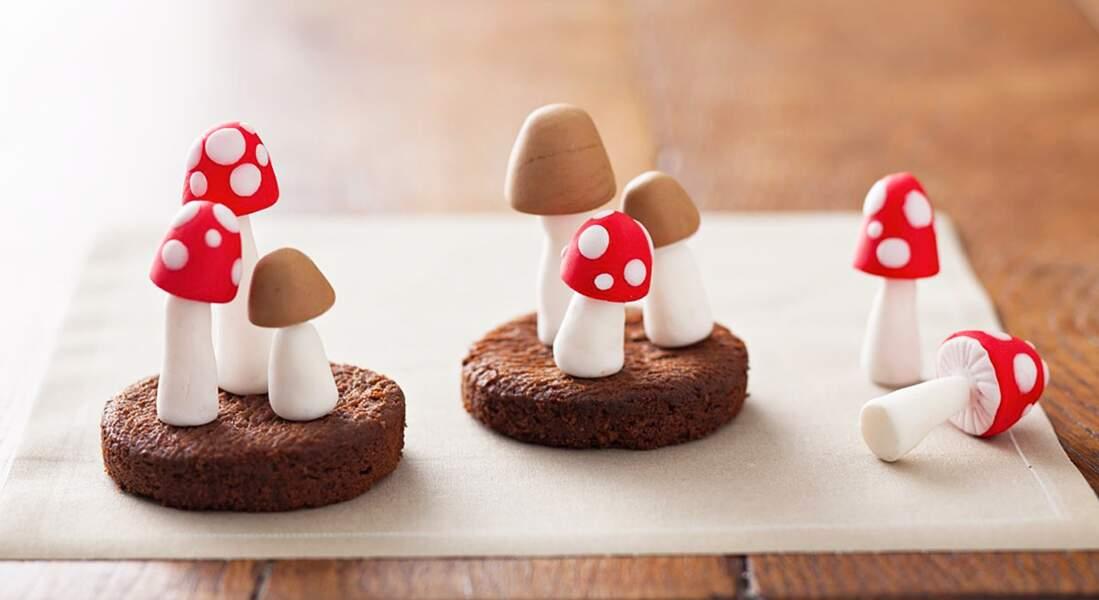 De beaux champignons