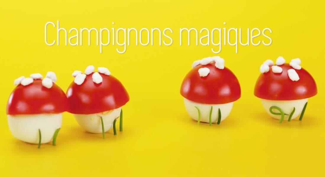 Des champignons merveilleux