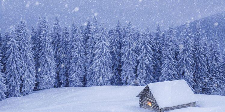 Conte de Noël exclusif : une nuit en forêt