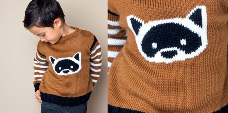 Le pull jersey motif raton laveur