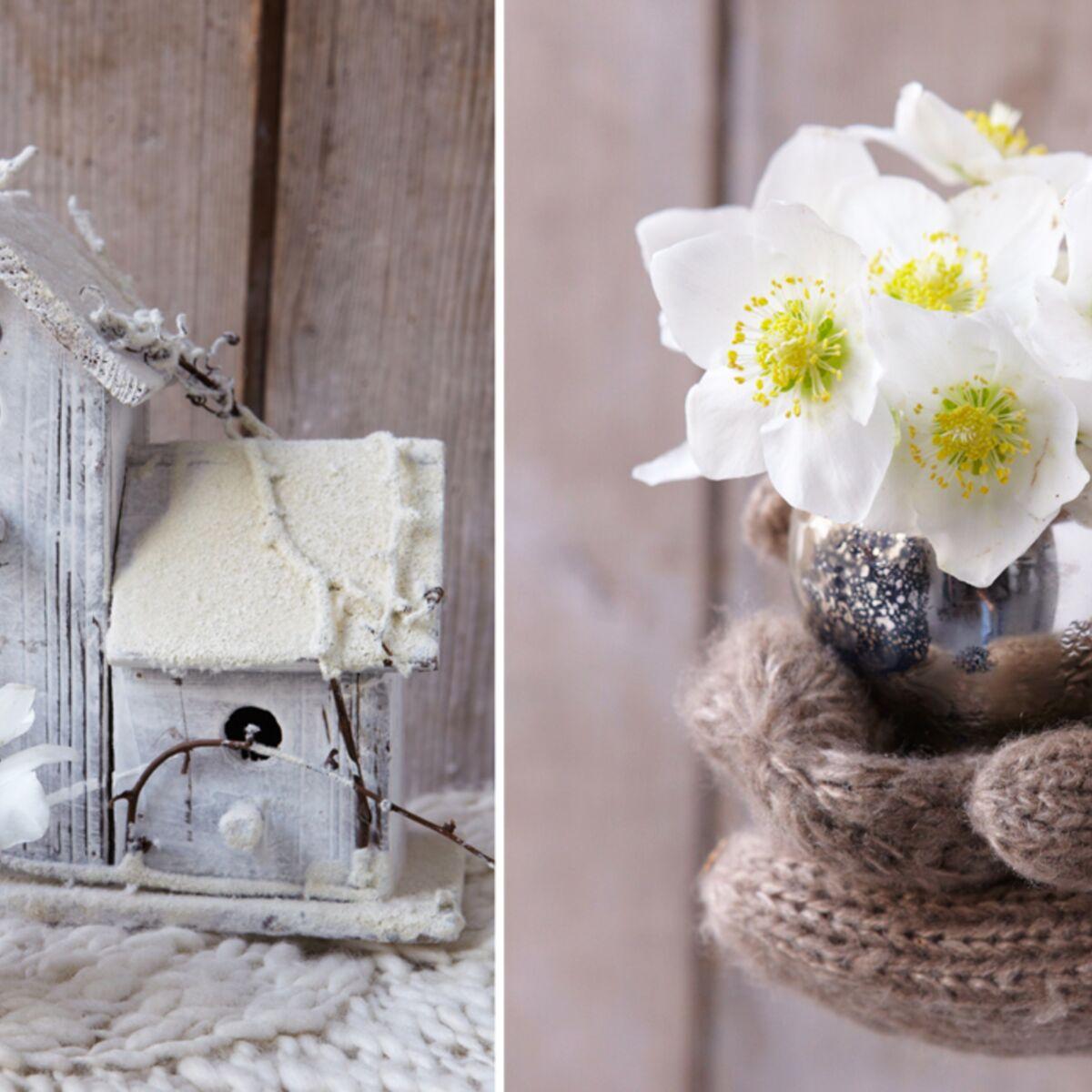 Hellebore Rose De Noel Entretien art floral de noël : petit bouquet d'hellébores : femme