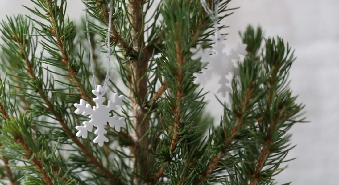 Décoration de sapin de Noël en plastique fou