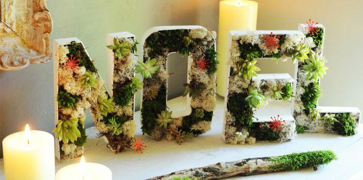 Décorations de Noël : lettres végétales