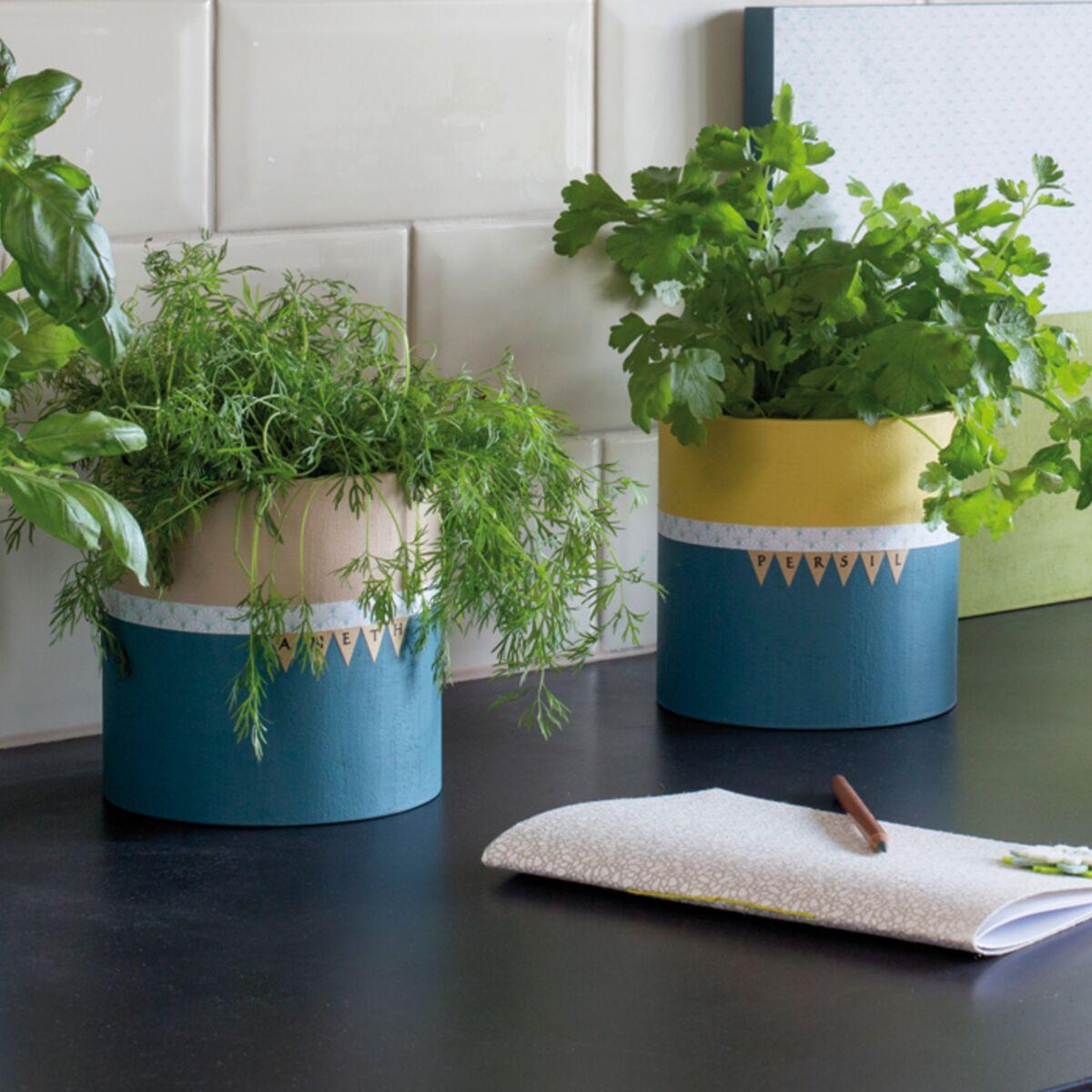 Des Pots A Plantes Aromatiques Originaux Pour Ma Cuisine Femme