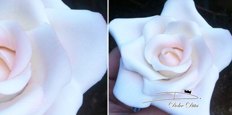 Pâtisserie créative : comment faire une rose en pâte à sucre ?