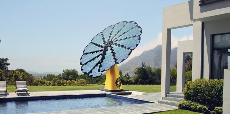 Smartflower, un tournesol géant dans mon jardin