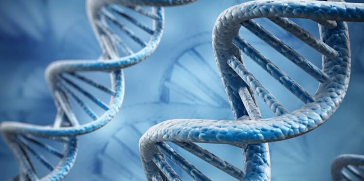 Le gène de l'obésité bientôt sous contrôle ?