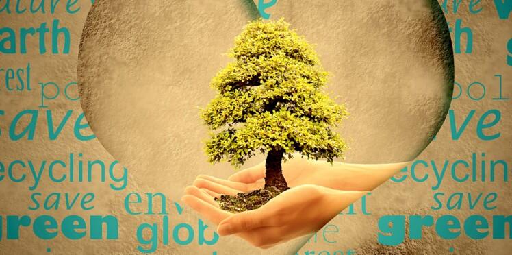 Un câlin très nature = un arbre pour la planète