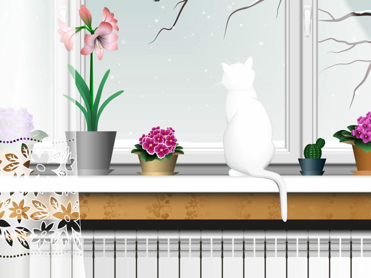 Humidité Dans Une Piece Que Faire comment maintenir un bon taux d'humidité dans la maison