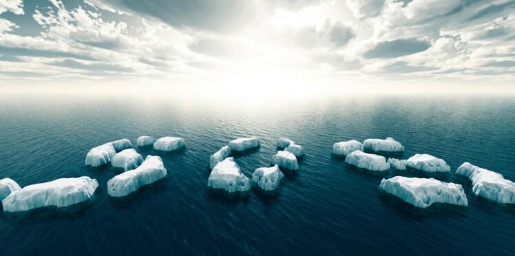 COP 21 : un iceberg dans Paris, c'est pas un peu trop ?