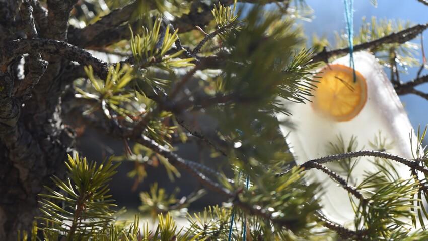 Décorations de Noël : déco glacées pour le sapin