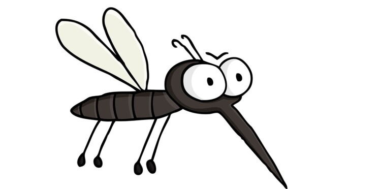 Dengue : le vaccin de l'espoir