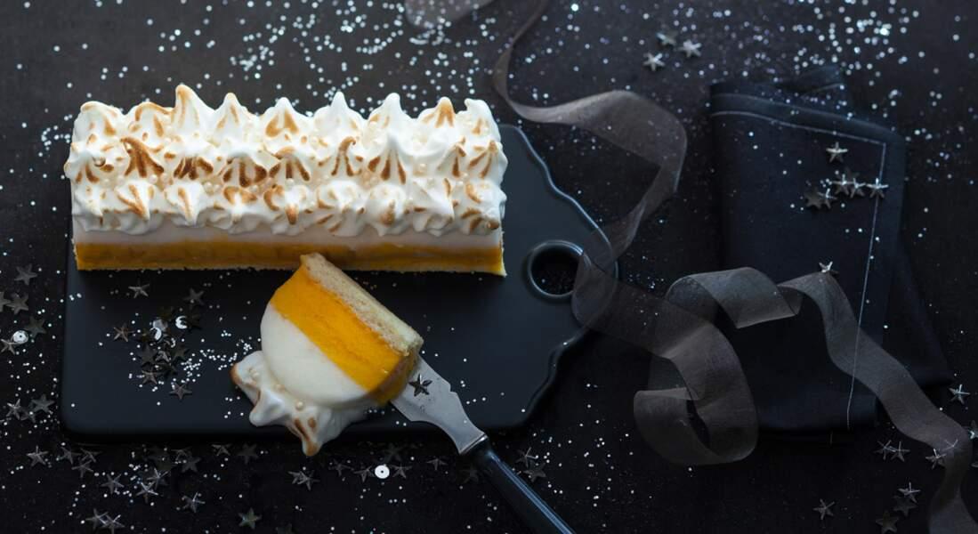 Gâteau bijou : bûche glacée nacrée