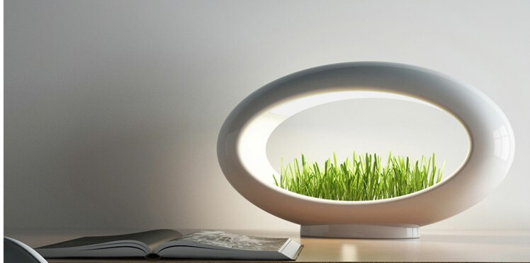 La lampe qui fait pousser l'herbe