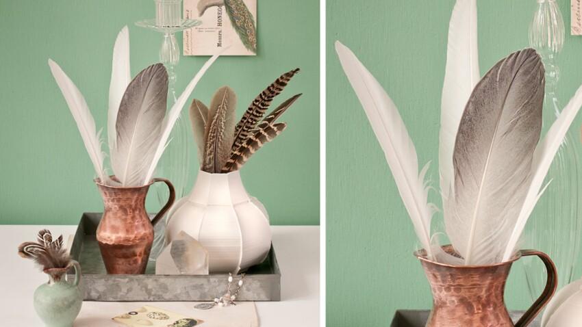 Une composition nature avec des plumes