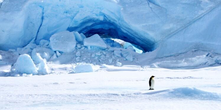 Une gorge profonde sous la glace ?
