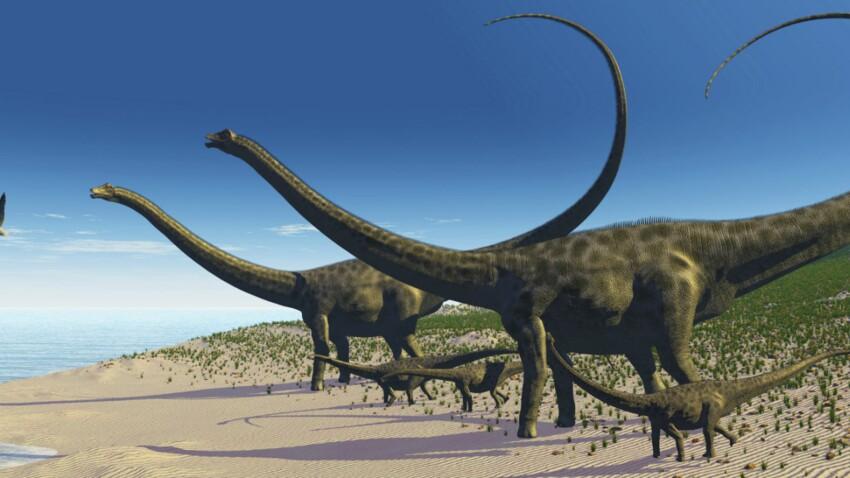 Du neuf sur les techniques de drague des dinosaures