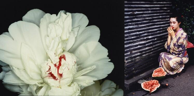 Les troublants clichés du Japonais Araki (PHOTOS)
