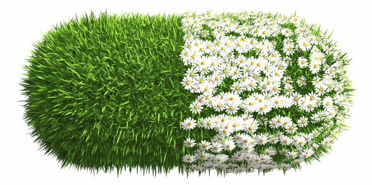 Jardinage : la nouvelle thérapie santé ?