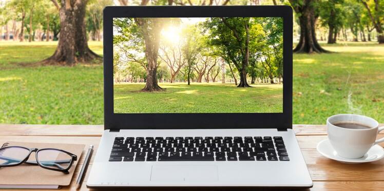 Comment installer un joli fond d\'écran ? : Femme Actuelle Le MAG