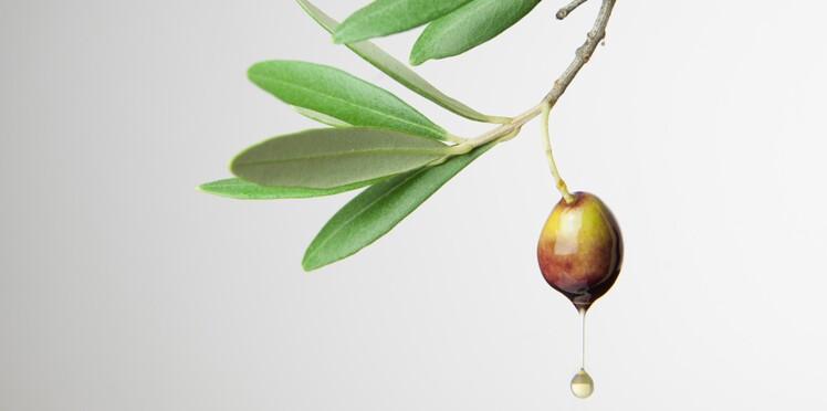 Les vertus santé de l'huile d'olive
