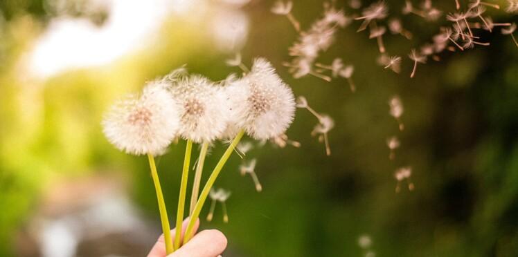 Allergies et mémoire ne font pas bon ménage !