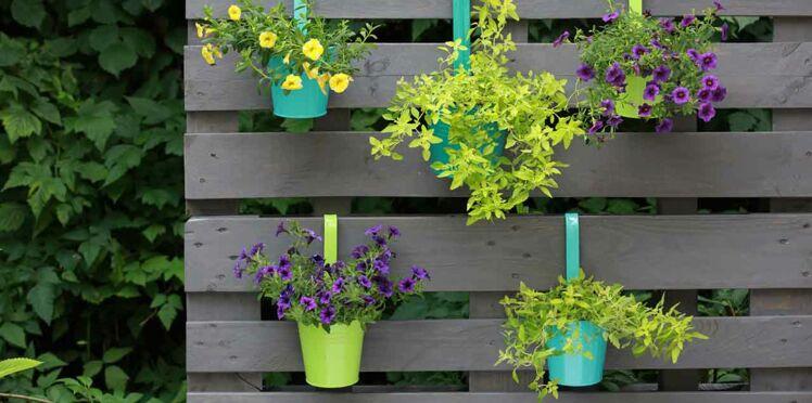 Recup : un mur végétal en palette