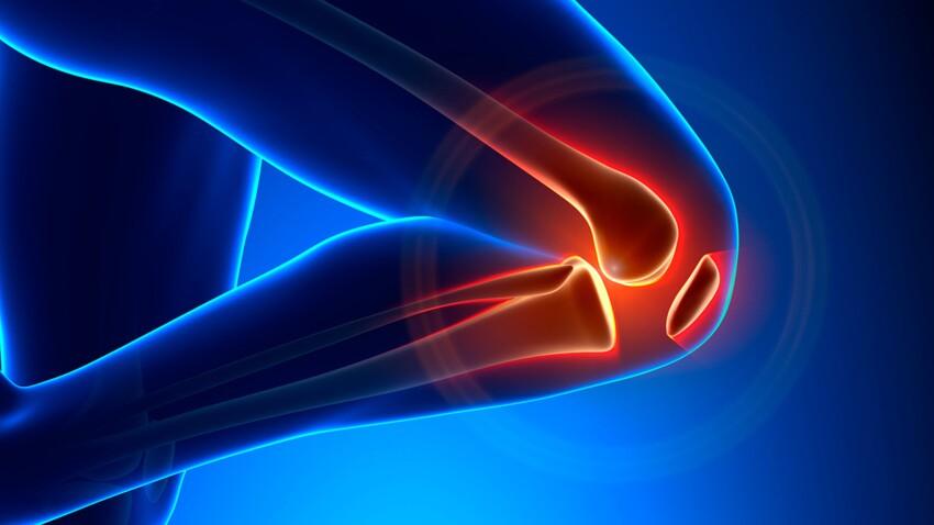 Réparer l'articulation du genou avec du cartilage... de nez !