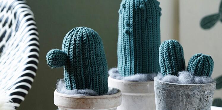 Des petits cactus au crochet