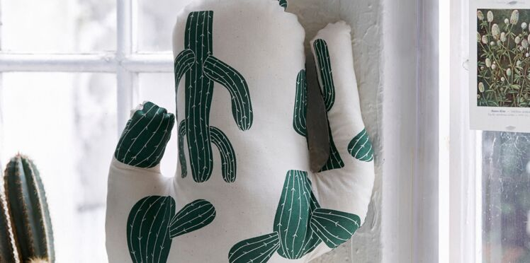 Un coussin cactus