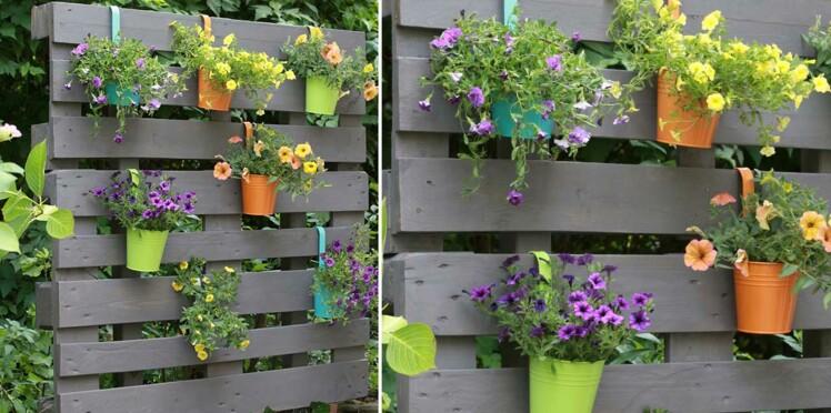 Un mur végétal en palettes
