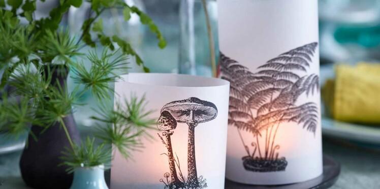 Des lampes naturelles en calque