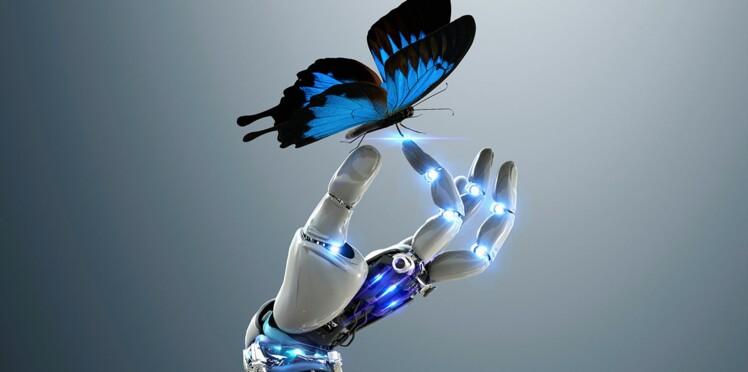 Le biomimétisme : quand la science copie la nature