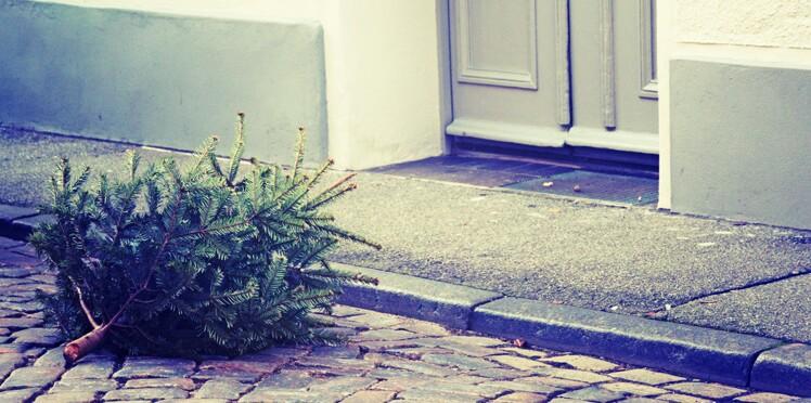 Sapin de Noël : je peux le déposer sur le trottoir ?