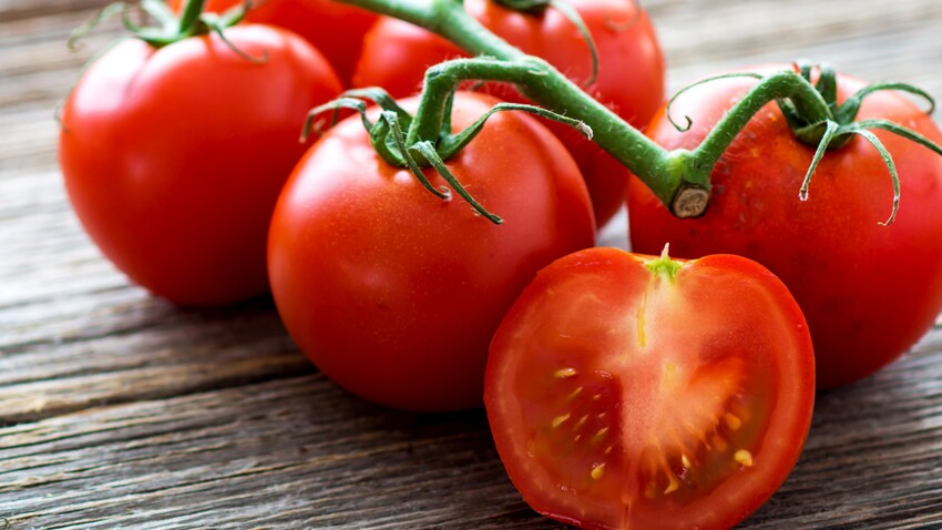 Bientôt des tomates… avec un goût de tomate !