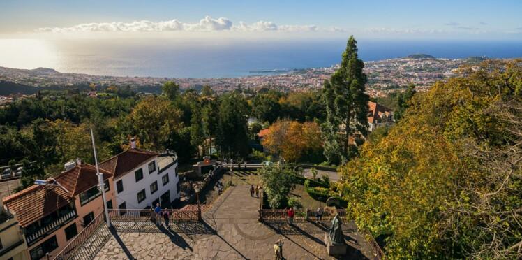 Madère: les jardins extraordinaires de Funchal