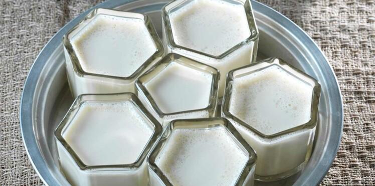 Yaourts maison au lait de soja