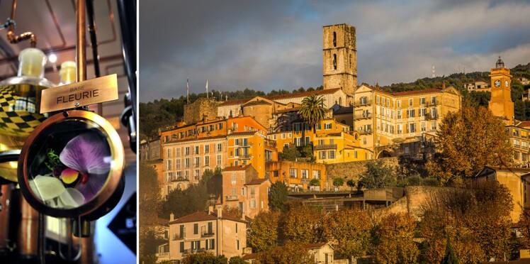Mettez-vous au parfum en Provence ! (VIDEO)
