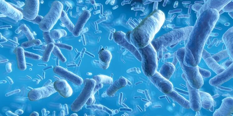 Un nouvel antibiotique contre les bactéries les plus résistantes !