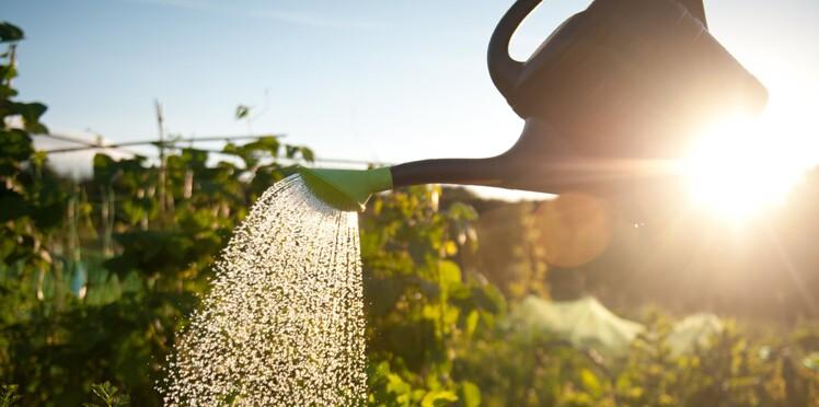 Restrictions d'eau : suis-je concerné ?