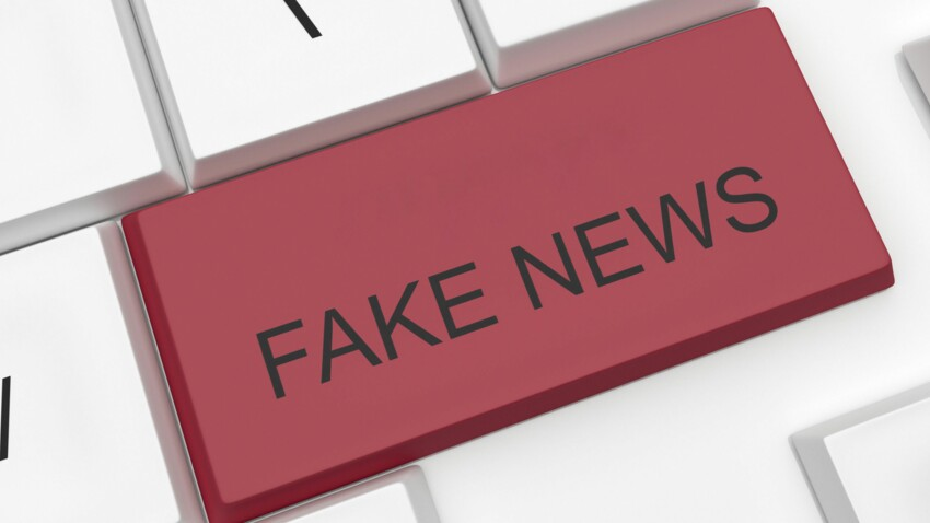 Comment démêler le vrai du faux sur Internet ?